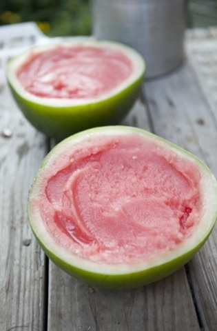 Watermelon Sorbet in a Watermelon Rhine....How Clever!